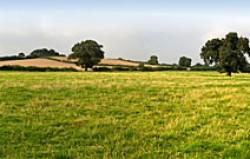 Grundstücke